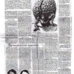 1982 Horizonte, Das Gespaltene Weltbild