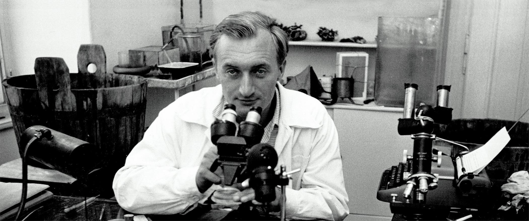 Rupert Riedl